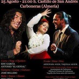 Cartel2-Festival-flamenc-El-Arte-en-Ruta-Carboneras-2016