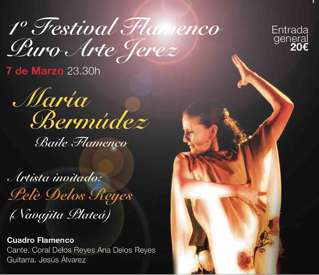 FESTIVAL FLAMENCO PURO ARTE. María Bermúdez y Pele de los Reyes (Navajita Plateá) y su cuadro