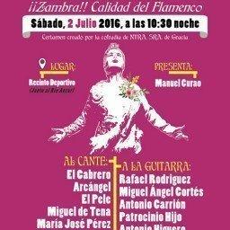 cartel-noche-flamenca-zambra-2016