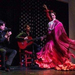 flamenca-bailando-en-triana