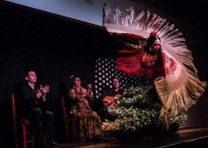 mantón-de-manila-flamenco