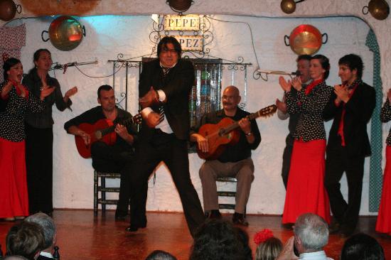 Cuadro de la Taberna Flamenca Pepe López y artistas invitados