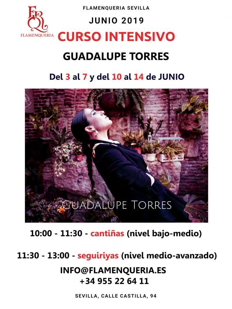 Curso Intensivo con Guadalupe Torres