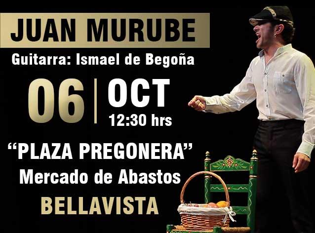 Presentación último trabajo 'Plaza Pregonera'. Juan Murube