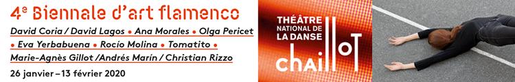 IV Bienal de Arte Flamenco de París - enero 2020