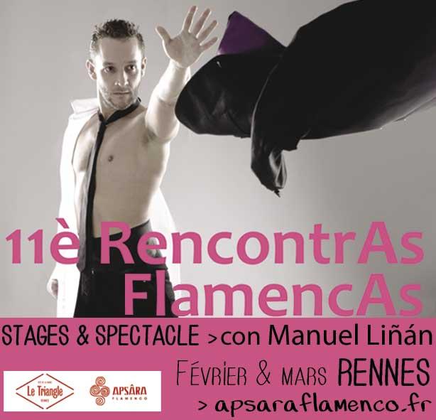 Stages flamencos avec Manuel Liñan (danse et chorégraphie), David Carpio (chant) et Manuel Valencia (guitare)