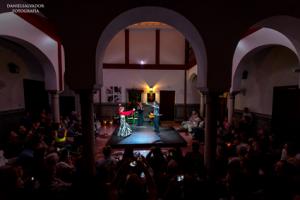 casa-de-flamenco-show-sevilla