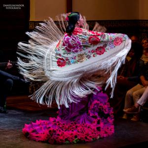 casa-flamenco-show-sevilla